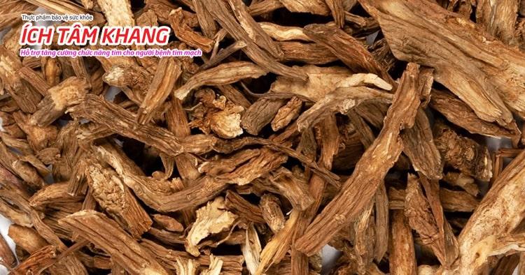 Rễ cây Đan sâm có nhiều hoạt chất quý tốt cho người bệnh tim