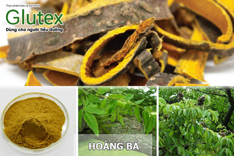 Berberin là thành phần chính của nhiều loại thảo dược, trong đó có Hoàng bá