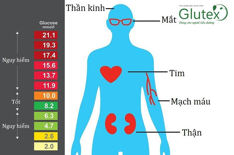 Đường huyết tăng cao kéo dài có thể dẫn tới các biến chứng nguy hiểm trên toàn bộ cơ thể