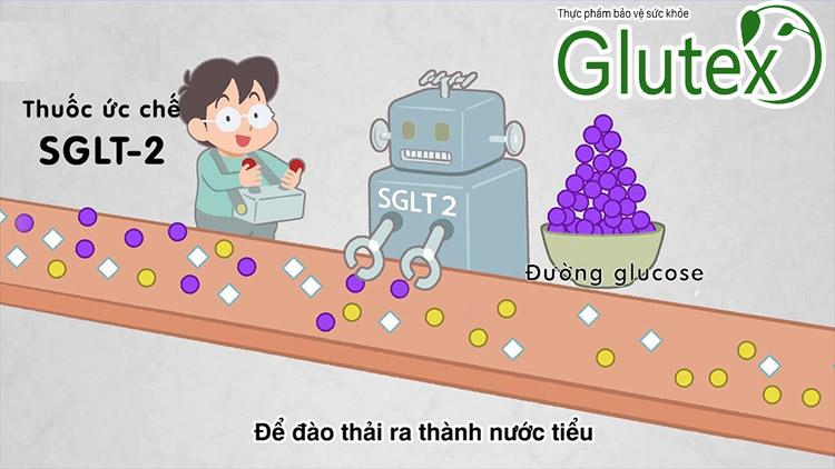 Thuốc đào thải đường ra nước tiểu có thể hứa hẹn mang đến nhiều đột phá cho người tiểu đường