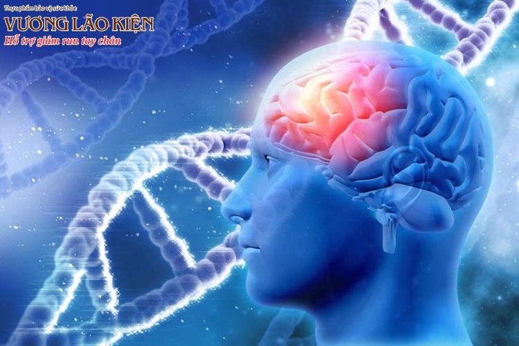 Hiện nay các nhà khoa học đã xác định được gen di truyền gây bệnh Parkinson