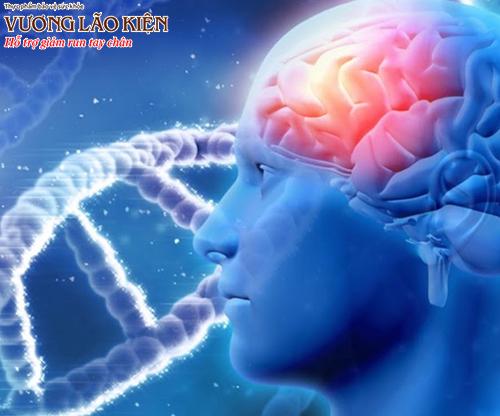 Bệnh Parkinson có khả năng di truyền thông qua gen