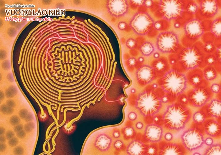Bệnh Covid-19 gây ra nhiều tổn thương trên mô não cũng như tế bào thần kinh