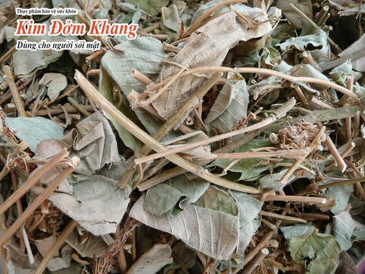 Cây kim tiền thảo được phơi khô thành vị dược liệu bài sỏi mật