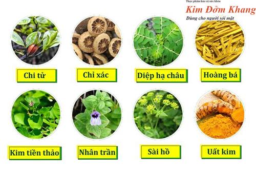 8 loại thảo dược quý tác động toàn diện lên hệ thống gan mật