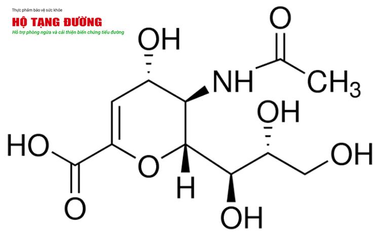 Andrographolide trong Xuyên Tâm Liên có tiềm năng trong việc chống lại COVID-19