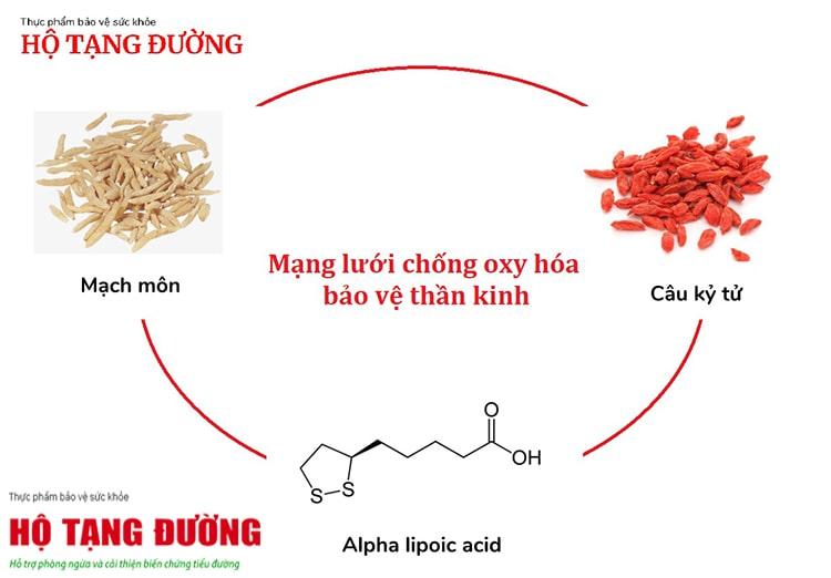 Sử dụng thảo dược chống oxy hóa là cách phòng ngừa biến chứng tiểu đường hiệu quả.