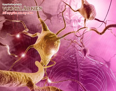 Run do rối loạn thần kinh thực vật sẽ khó giảm nếu chưa biết cách này