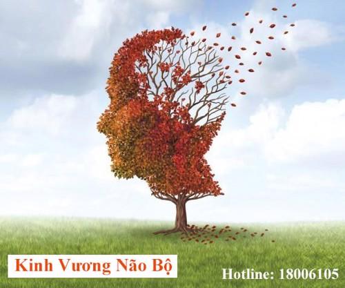 Mất trí nhớ tạm thời sau tai nạn - Dấu hiệu và biện pháp phục hồi hiệu quả